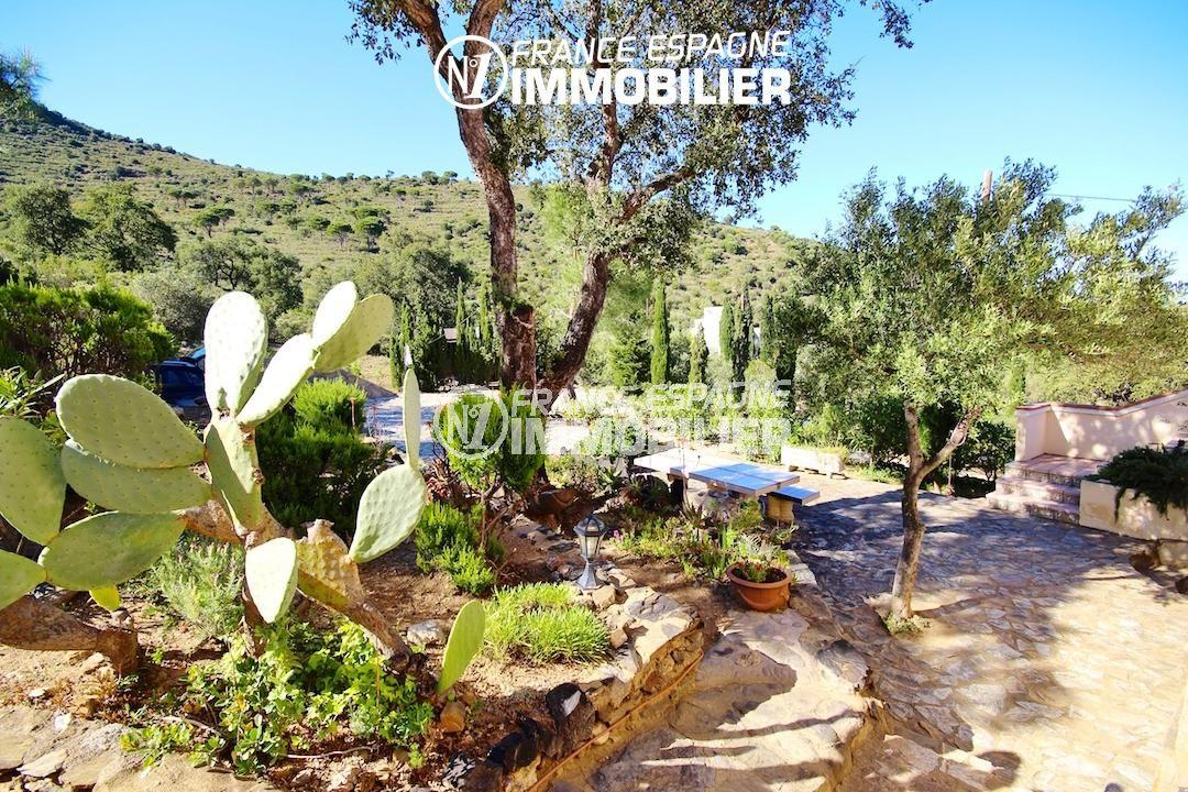 agence immobiliere llanca: villa ref.2901, aperçu cactus et végétation environnante