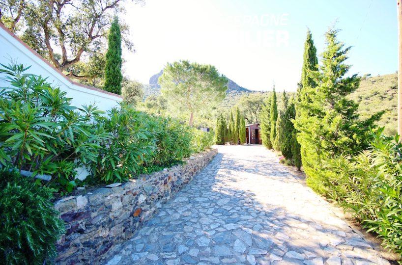 maison a vendre espagne bord de mer,  ref.2901, allée bordée darbres dans le jardin