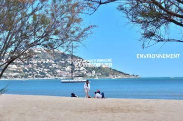 aperçu de la plage et du puig rom aux alentours