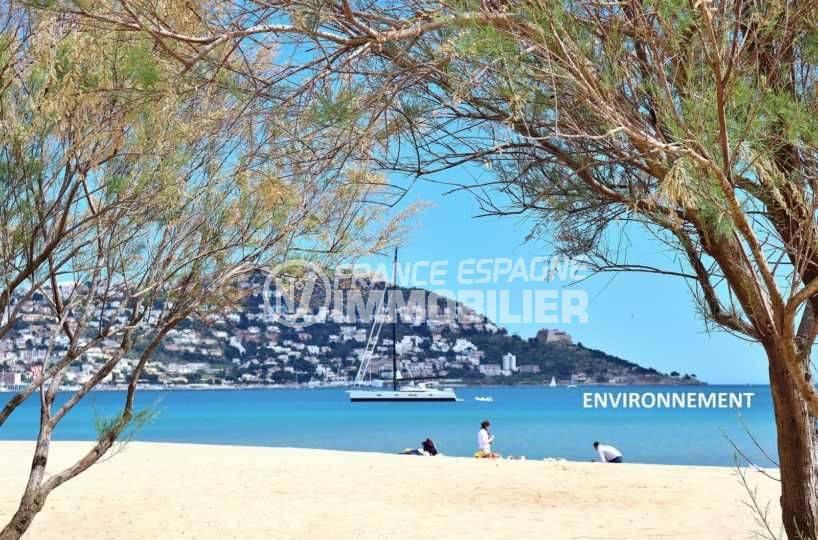 vente maison espagne costa brava, ref.3795, vue sur la mer et le puig rom aux environs
