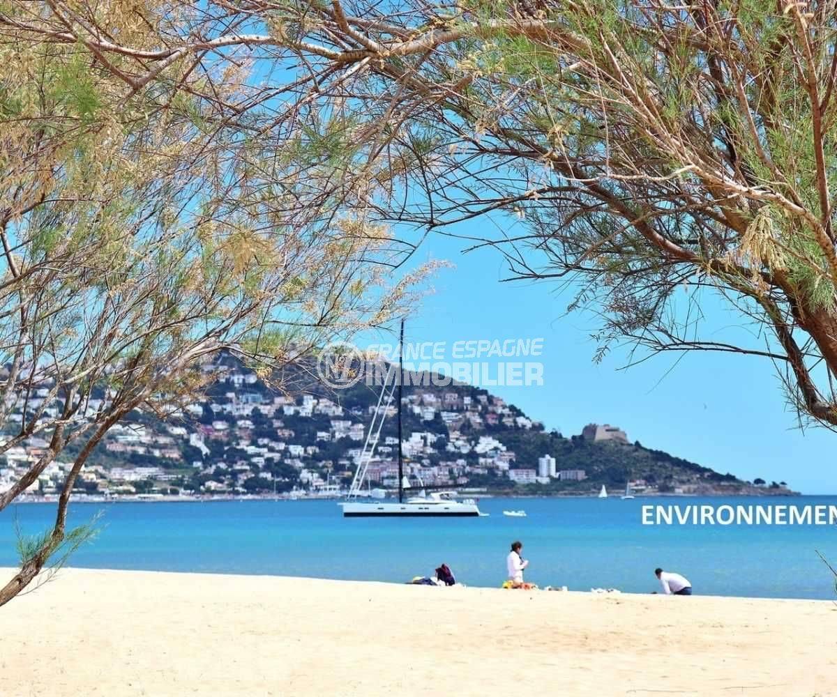 vente immobiliere rosas espagne: appartement ref.3776, aperçu des environs: plage et Puig Rom en arrière plan