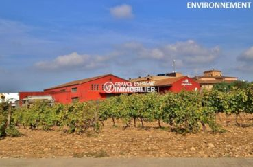 vente immobiliere espagne costa brava: ref.3823, producteur vignoles aux environs