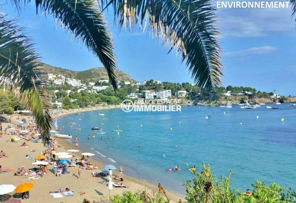 vue sur la plage et la côte à proximité