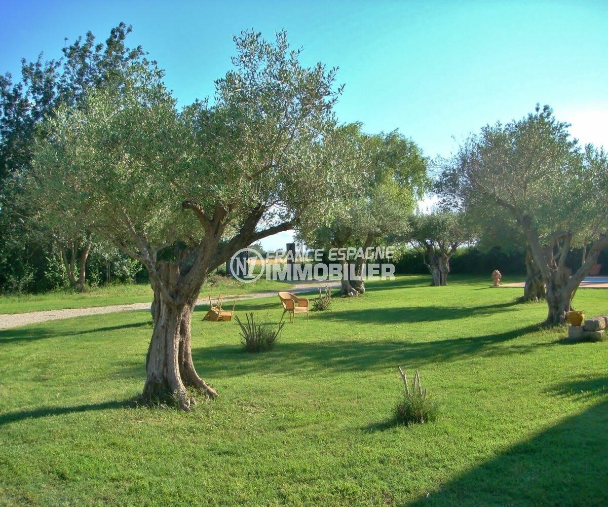 achat immobilier costa brava: villa 318 m², terrain de 10 000 m² arboré et bien entretenu
