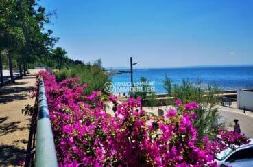 promenade qui dessert la plage aux alentours