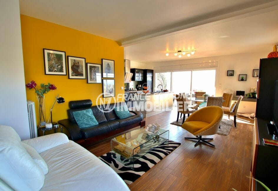 roses immobilier: villa 192 m², salon / séjour lumineux avec cuisine ouverte accès terrasse