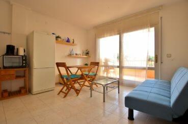 immo roses: appartement 43 m², salon / séjour avec belle terrasse de 6 m²