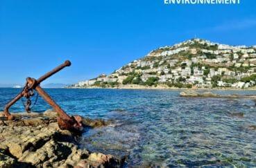 roses, entre mer et montagnes, ancre de bateau échoué sur un rocher