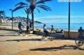 promenade à pied ou en vélo le long de la plage de roses