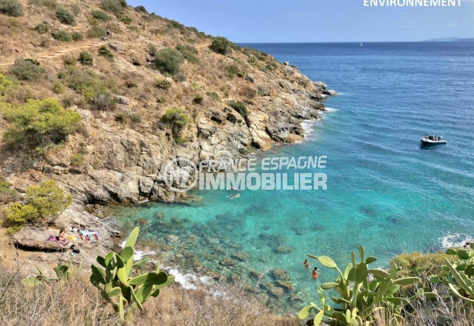 détente près des côtes rocheuses de roses, plage et mer
