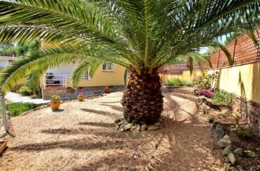 achat immobilier costa brava: villa 4 pièces 145 m², aménagement jardin, fleurs et palmier