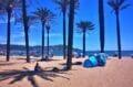 très belle plage ensoleillée de roses avec des palmiers, vue sur les montagnes