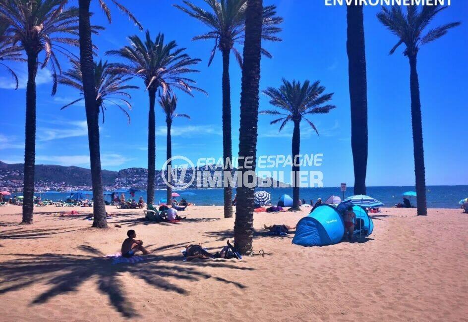 la plage de roses, ses palmiers, son sable fin, ses  eaux transparentes, vue montagnes