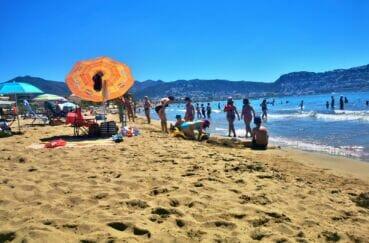 la plage de roses avec le sable chaud, du soleil, des palmiers et une eau turquoise