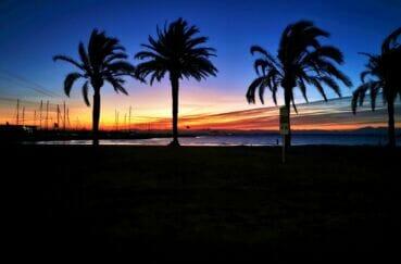 coucher de soleil sur la baie de roses, palmiers plage et mer