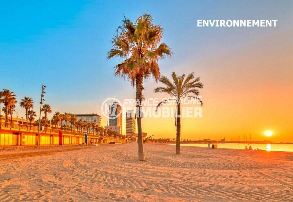 le sable fin, les palmiers et le magnifique coucher de soleil sur la plage de barcelona