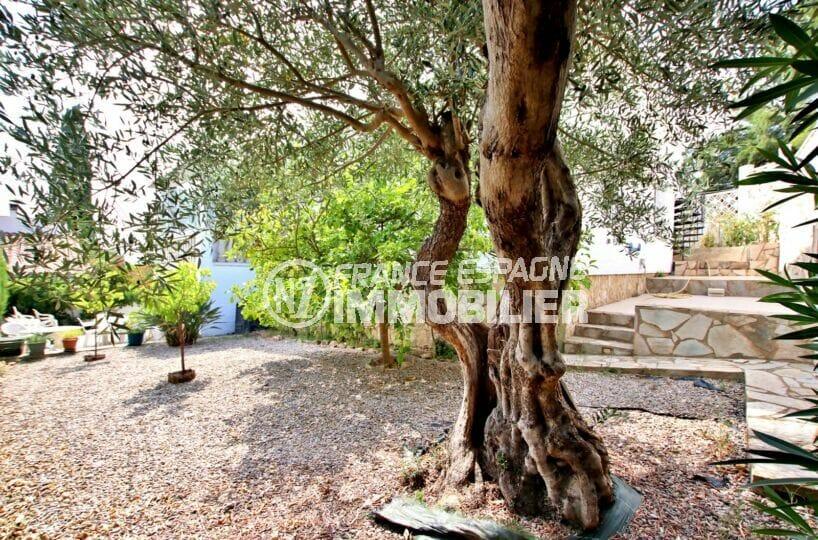 maison a vendre a rosas, 4 chambres 182 m², jardin ombragé 342 m²