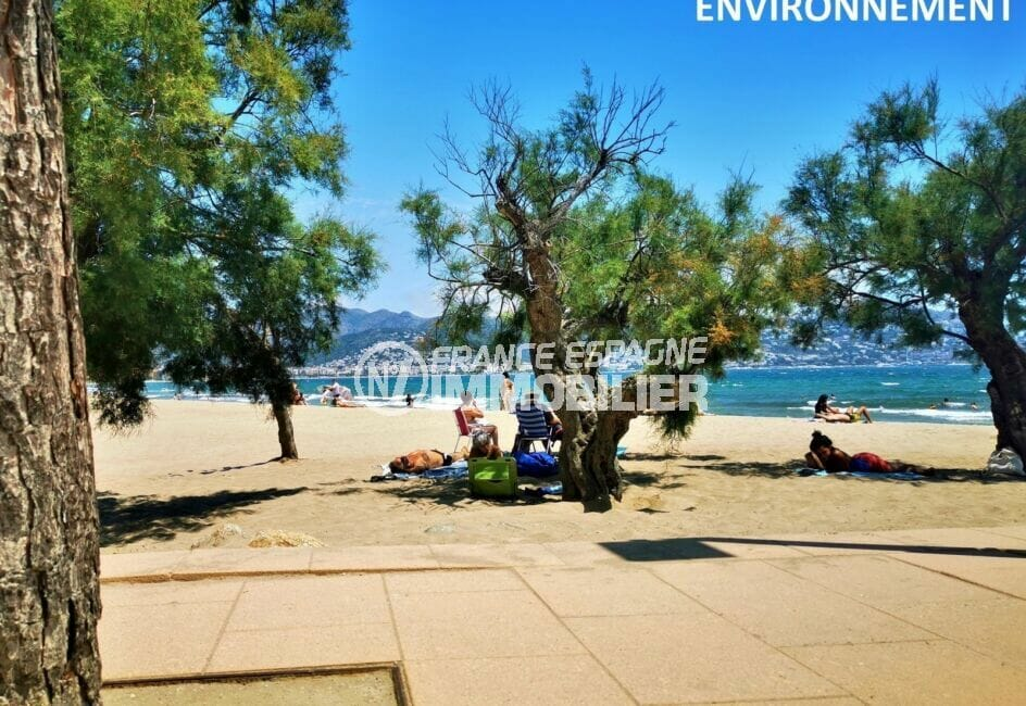 la plage de roses et ses nombreux petits coins à l'ombre sous les arbres