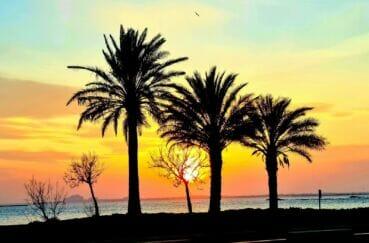 éblouissant coucher du soleil face à la mer de roses