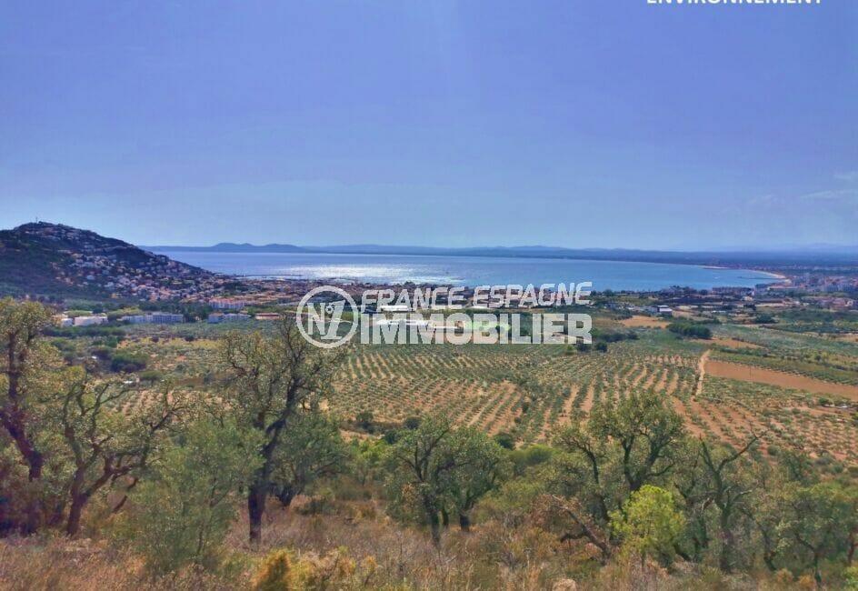 superbe vue sur les montagnes, la mer et les champs d'oliviers